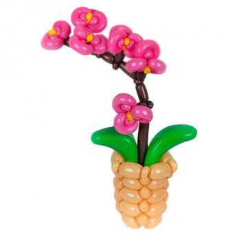 Цветок из шариков Орхидея