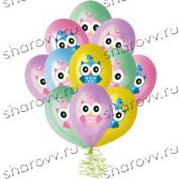 """Воздушные шары с гелием """"Совы"""""""