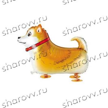 "Ходячий шар ""Рыжая собачка"""