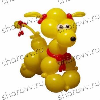 """Фигура из шаров """"Желтый пудель"""""""